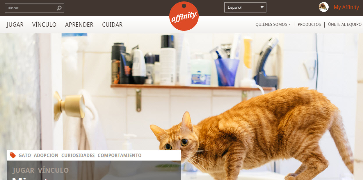 affinity petcare opiniones