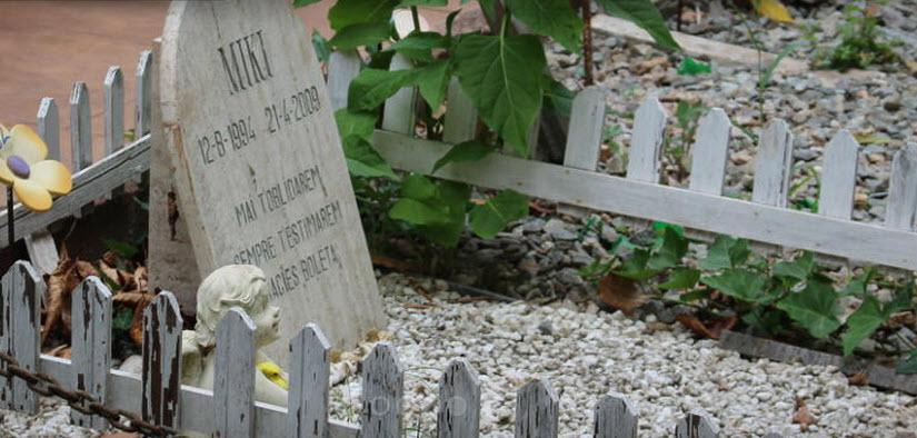 cementiri de petits animals Barcelona