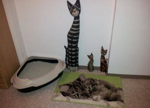 comprar areneros para gatos