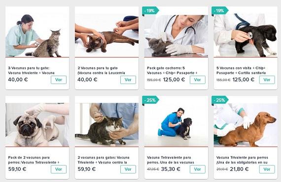 vacuns cachorros