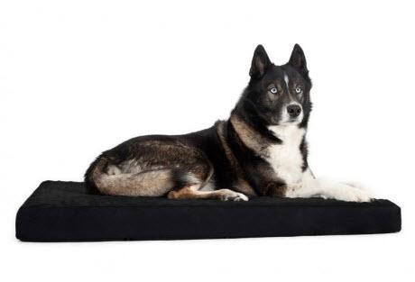 camas ortopedicas para perros