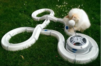 juguetes interactivos para gatos